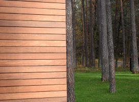 Cumaru - egzotinė mediena. Woca alyva