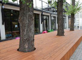 Maumedinės terasinės lentos aplink medžius