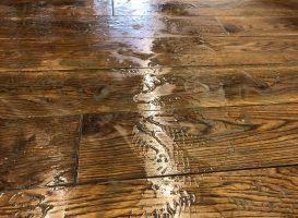 Medinių grindų atnaujinimas, plovimo metu