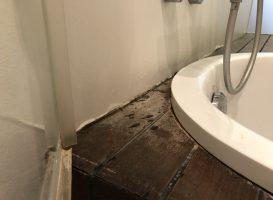 Vonios medinė dalis, prieš atnaujinimą