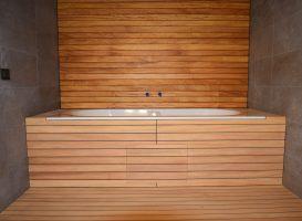 Laivo denis. Naudota mediena - tikas